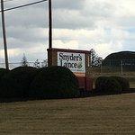 Solar Farm in background