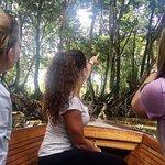 Mangrove Safari (2)