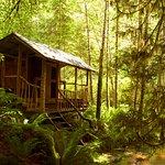 Our creek side sauna.