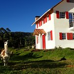 Casa Fuya Fuya at Hosteria Rose Cottage