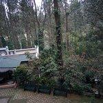 Foto de INDeco's Lake Forest Hotel Yercaud
