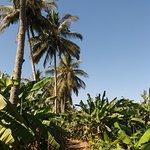 Salalah Beach Resort Hotel Foto