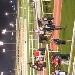 Photo of Meydan Racecourse