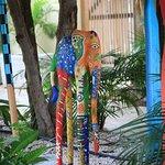 Zdjęcie Caribbean Club Bonaire