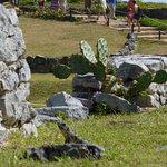 Maya Ruïnes van Tulum