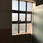 Bathroom window - broken and dirty