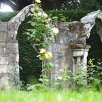 Old Ruins in Gardens