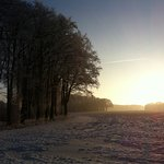 Burgwald Dinklage, Winter