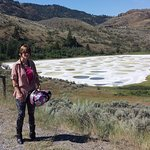 The View Of Spotted Lake At Osoyoos, B.C.