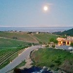 Zdjęcie Wild Coyote Estate Winery Bed & Breakfast