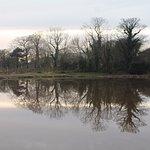 Foto de Shaftesbury Park and Carrickfergus Mill Ponds