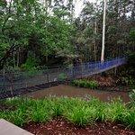 Bild från Samara Rainforest Retreat & Day Spa