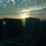IMAG0021_large.jpg