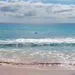 best snorkelling we founf on entire island