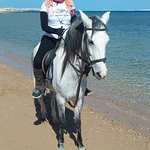Happy Horse Stable Magawish Horseriding Foto