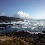 Photo of Hilton Garden Inn Monterey