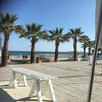 Ammos Beach Bar