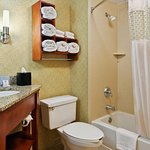 Guest Bath, Tub