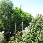 Photo of Corfu Senses Resort