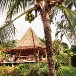 Tropical Costa Rican Rancho for dining, lounging and play!