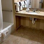Accessible Bathroom Shower/ Vanity