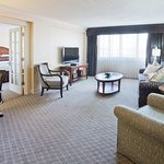 Hollander Suite