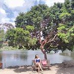 Photo of Parque Zoobotanico Arruda Camara