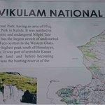 Rajamalai (Eravikulam) National Park Foto