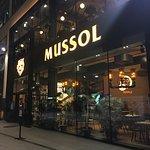 Mussol Diagonal Foto