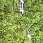Photo de Boquete Tree Trek