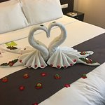 Beautiful swans on our hotel bed
