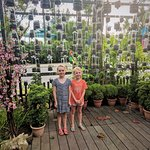 Recycling Bottles into Planters
