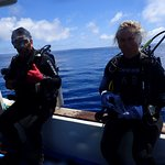 Diving Gordon Rocks