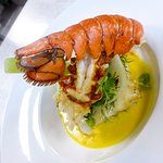 skrei and lobster