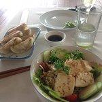 Tofu salad and pork guyoza