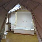 Sekanani Camp Photo