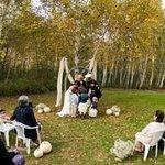 Birch Grove Ceremony Site Option