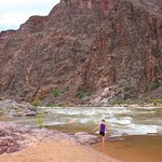 Wading in the Colorado River