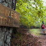 Ives Trail Greenway