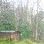 PRIVATE GARDEN AND BACKS ONTO WOODLAND WALKS