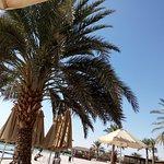 Lagoon Hotel & Resort Photo