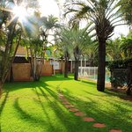 Our beautiful and tranquil palm trees and well manicured gardens