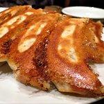 焼き餃子 / Pan-fried dumpling
