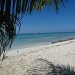 The beach at Casa Libre