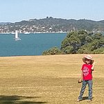 the view from Waitangi National Trust & Treaty House