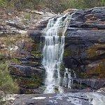 Carisbrook Waterfall