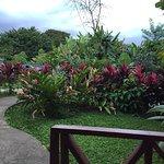 Foto de Selvita Lodge Arenal