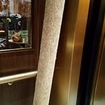 "1/2"" plywood chilling in the elevator, cheap stuff"
