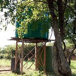 Water tank for our borehole water good to drink