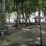 Landscape - South Palms Resort Photo